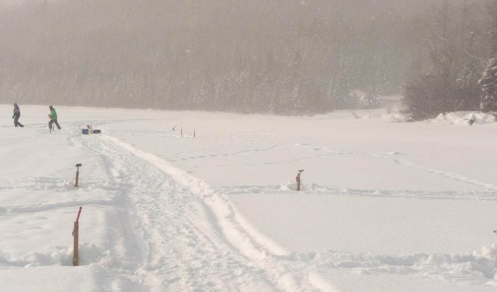 sentier de raquettes sur le bord du lac témiscouata